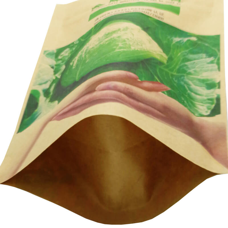 3.Fully biodegradable stand up kraft paper bags  (3)